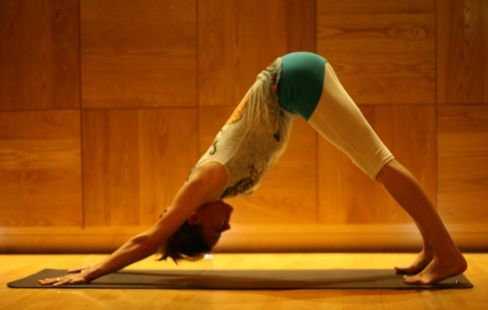 Prasarita Padottanasana Twist Gallery - MuMu Yoga